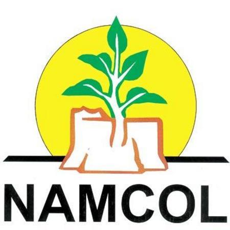 Namcol3 0 cv