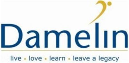 Damelin logo cv