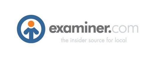 Examiner logo cv