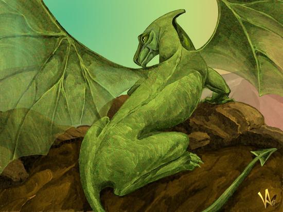 Dragon cv
