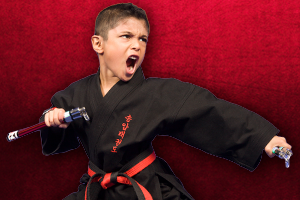 Karate for kids cv