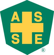 Asse cv