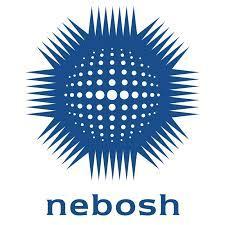 Nebosh cv
