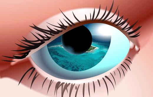 Eye519 cv