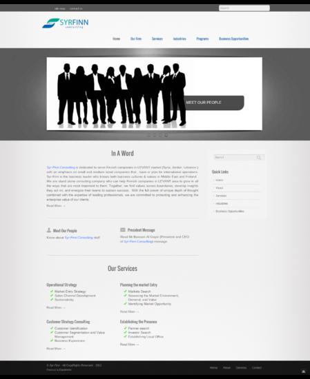 Syr finn consulting cv