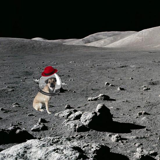 Ruby on the moon cv