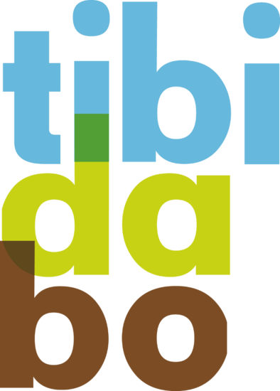 Logotibidabo cv