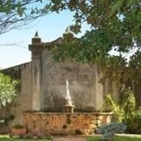 Aurelia gardens2 cv