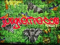 Junglelife cv