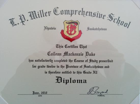 Edited diploma cv