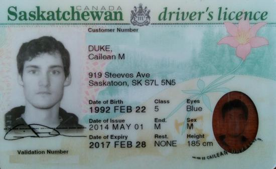 Edited licence cv