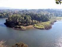 Elk rock island cv