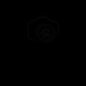 App logot 110414 cv