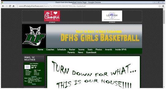 Dfhs website cv