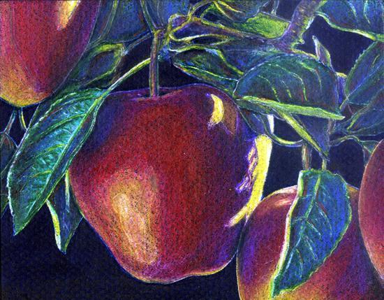 Apples cp cv