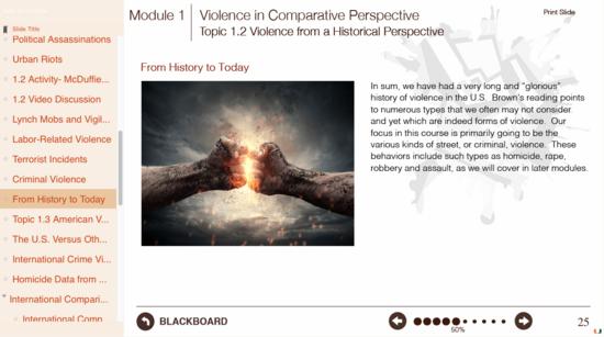 Umiami violenceinamerica modulecontent version1.0 sample 2 cv
