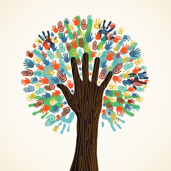 2013 03 21 images diversitytree thumb