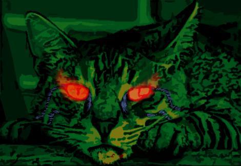 Demonic cat cv