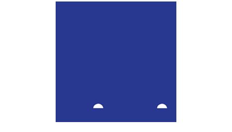 Nestle cv