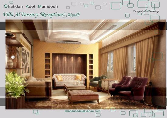 Portfolio shahdan adel 14 cv