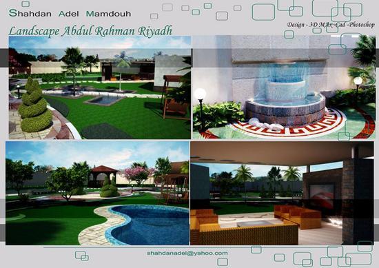 Portfolio shahdan adel 24 cv