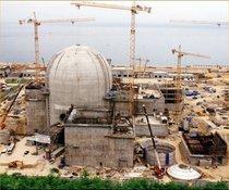 Nuclear plant construction cv