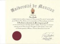 Diplome b.a.a. cv