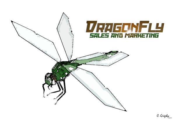 Dragonfly 900x627 cv