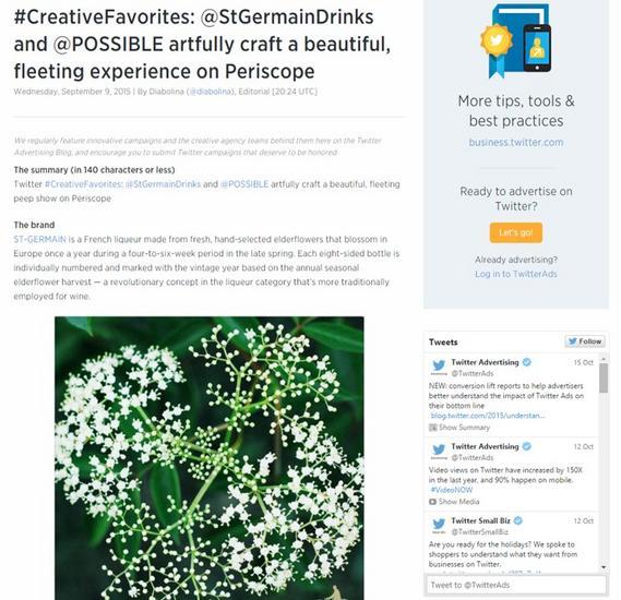 Twitter blog st g cv