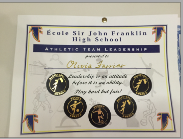 Athletic team leadership picture eportfolio cv