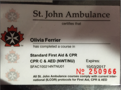 Ambulance cv