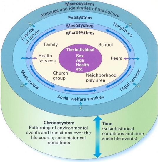 Bronfenbeenner s ecological system cv