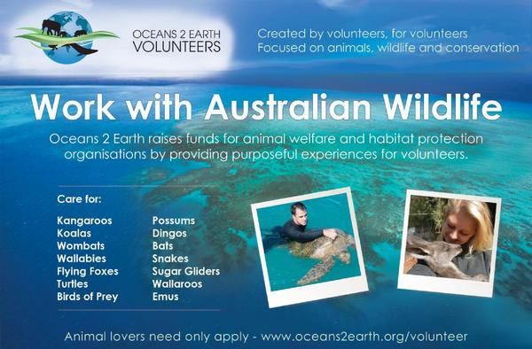 Oceans 2 earth magazine ad cv