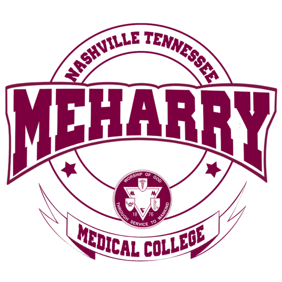Meharry throwback ultra grand finale cv