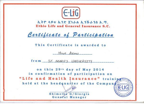 Ethio life insurance  cv
