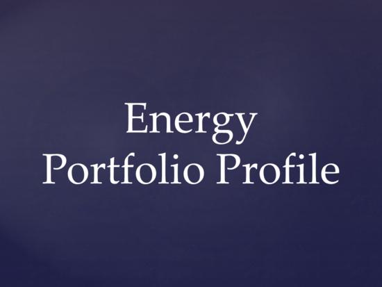 Portfolio profile 2016 thumb