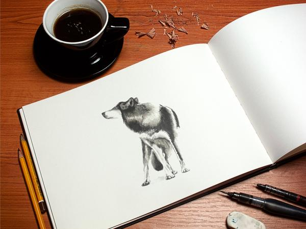 Art book mockup psd cv