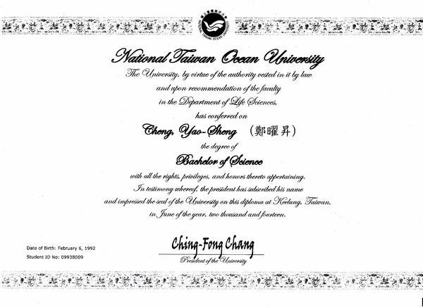 Diploma e 001 cv