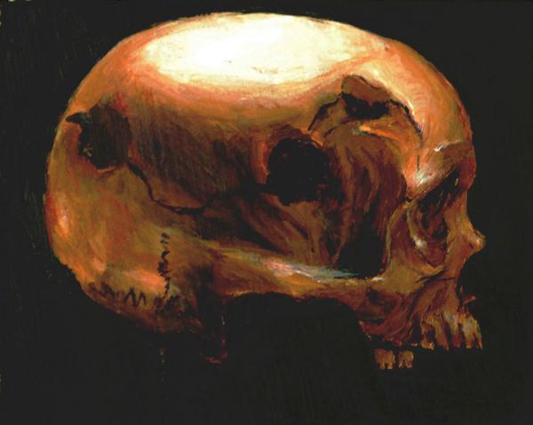 Skull cv