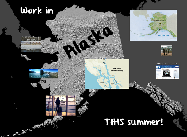 Work in alaska this summer cv