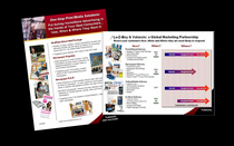 Sales collateral1 cv