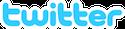 Twitter logo 125x29 cv