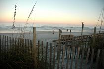 Beach cv