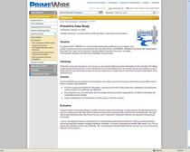 Primewire case study screenshot cv