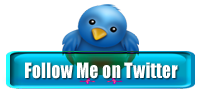 Twitter bird icon cv