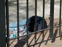 Capitol outreach naptime cv