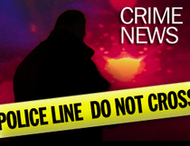 Webkey crime cv