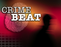 Webkey crimebeat cv