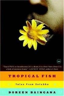 Tropical fish cv
