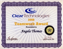Teamwork award cv